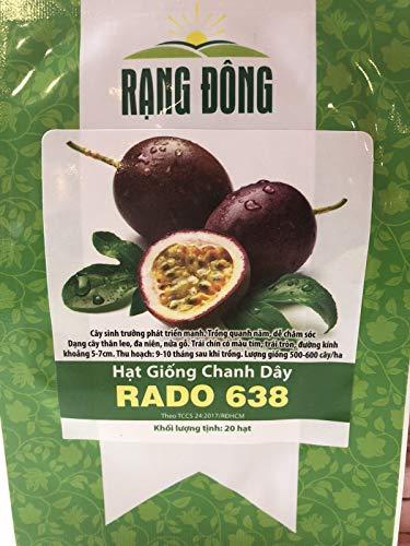 (HATCHMATIC 10+ Musque de Provence Fairytale Pumpkin Seeds! Heirloom, Organic, Non GMO )