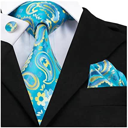Hi-Tie New Fashion Woven Silk Paisley Tie Set for Men