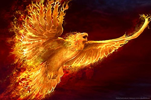 Phoenix Rising Tom Wood Fantasy Art Poster 24x36 inch