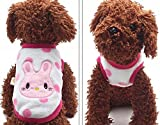 #5: New Cartoon Teacup Dog Clothing Baby Pet Clothes Puppy Winter Warm Thick Sweater (XXXS, White)