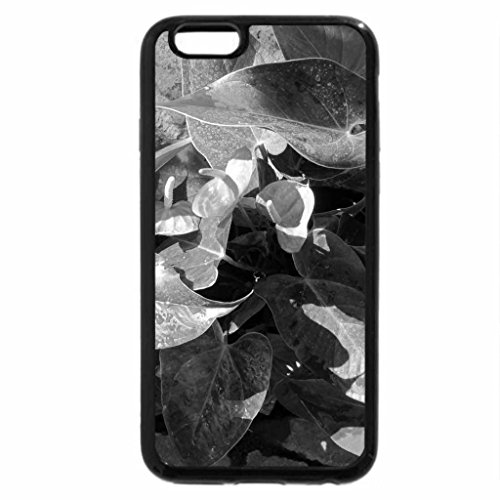 iPhone 6S Plus Case, iPhone 6 Plus Case (Black & White) - A great day at Edmonton garden 09