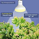 BR25 Grow Light Bulb for Indoor Plants, Full