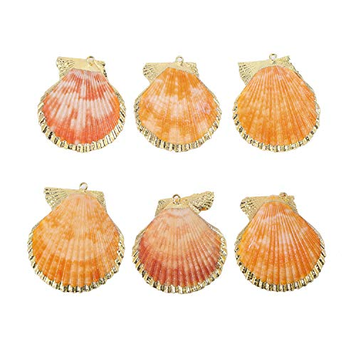 6 PCS Natural Sea Shells Pendant Handmade Gold Plated Scallop Shells Charms Bulk for Jewelry Making