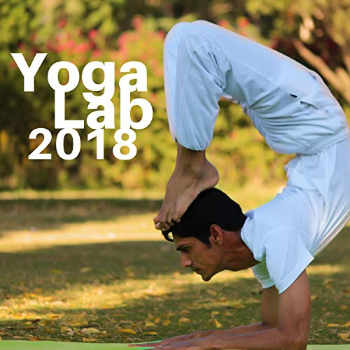 Yoga Lab 2018 - Modern Design Instrumental Music with Sounds ...