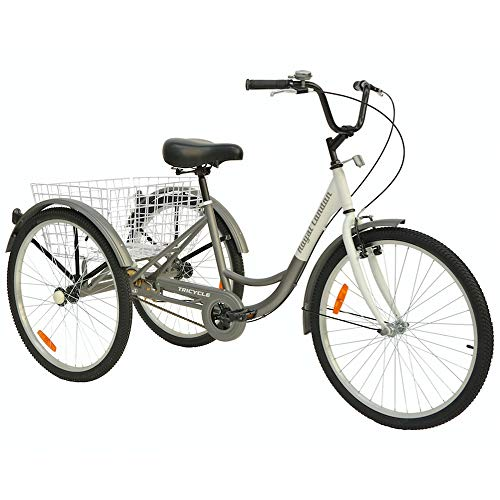 Royal London Adult Tricycle 3 Wheeled Trike Bicycle w/Wire Shopping Basket Silver