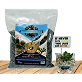 Shehri Kisaan Dry Fast Draining Porous Gritty Organic Cactus and Succulent Mix (1 kg)