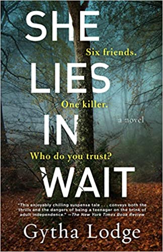 Review: She Lies in Wait, Gytha Lodge
