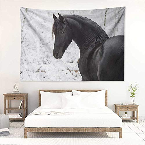 - Equestrian,Tapestries for Sale Black Friesian Sport Horse Portrait on a Snowy Winter Background Novelty Picture 72W x 54L Inch Mattress, Tablecloth White
