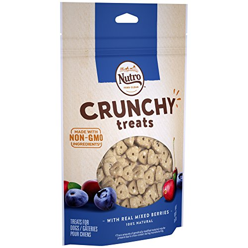 Berry Treat - Nutro Crunchy Dog Treats with Real Mixed Berries, 10 Ounce Bag