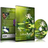 Relaxation DVD Lotus Pond for Relaxing and Mediation and Mindfulness