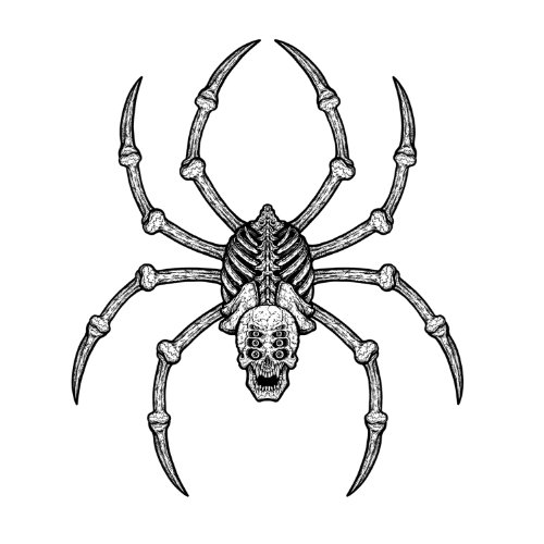 Jointed Spider Bones Party Accessory (1  - Halloween Jointed Cut Outs Shopping Results