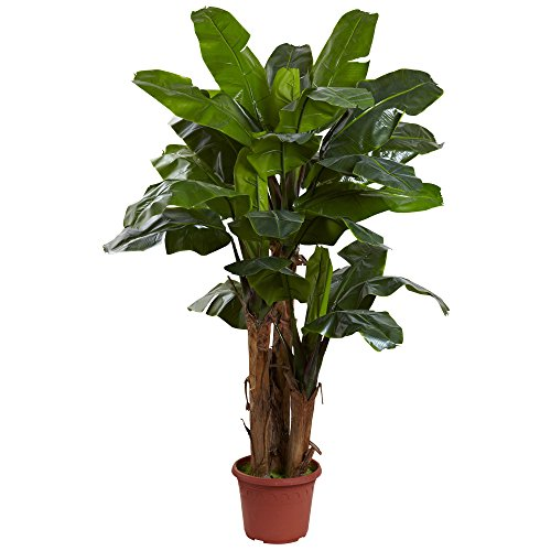 Nearly Natural 5434 Giant Triple Stalk Banana Tree UV Resistant, 7-Feet by Nearly Natural