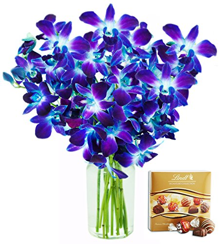 KaBloom Exotic Fresh Sapphire Blue Dendrobium Orchids from Thailand with Vase and One Box of Lindt Chocolates, 10 Count