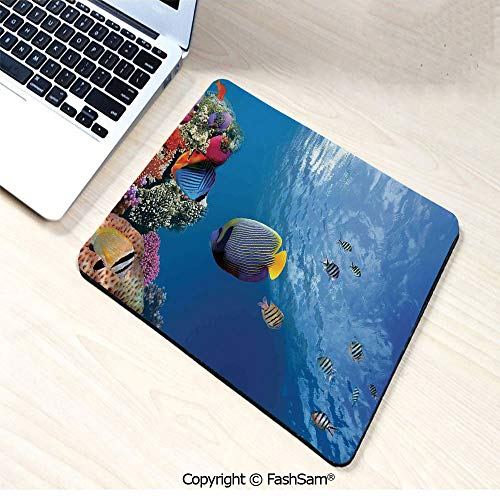 Personalized 3D Mouse Pad Tropical Emperor Long Living Angelfish in Underwater Exotic Marine Animal Image for Laptop Desktop(W9.85xL11.8)