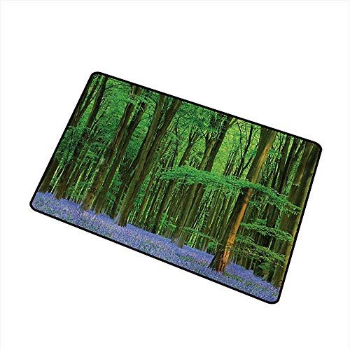duommhome Welcome Door mat Woodland Spring Sunshine in a Bluebell Wood Summer Dream Holiday Getaway Destination W20 xL31 Super Absorbent ()