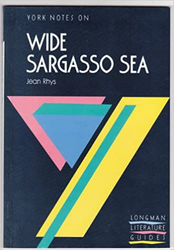 a look into wide sargasso sea essay Wide sargasso sea essays: wide sargasso sea motif walls essay comments: similar she walks up the 'oak' stairs and into 'the long gallery.
