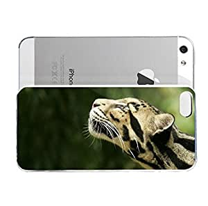 iPhone 5&5S cover case Animals Clouded Leopard