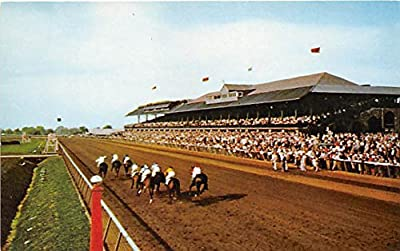 Stretch Drive at Keeneland Race Course Lexington, Kentucky, KY, USA Old Vintage Horse Racing Postcard Post Card