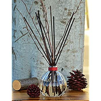 Manu Home Holiday Redwood Reed Diffuser | Create a Welcoming ambience with Our Coastal Redwood Scent Features a Spicy Blend of Eucalyptus, Sequoia, Birch and Red Amber | Made in USA
