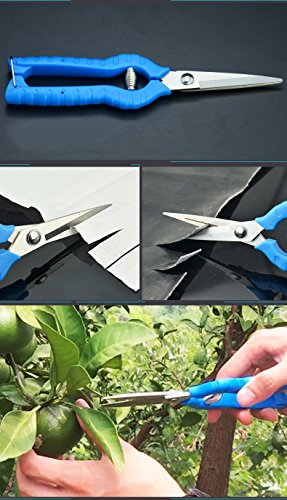Novo Micro-Tip Pruning Snip 8.07-Inchx1.97-Inch,Gardening Hand Pruner Pruning Shear with Straight Blade Blue by Wellco