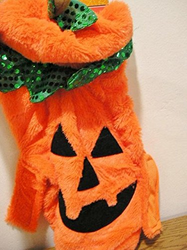 Pumpkin Pet Costume Halloween - (Cvs Halloween Costumes)