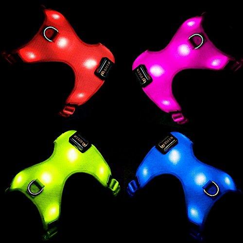 led light dog harness - 3