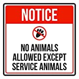 Notice No Animals Allowed Except Service Animals Disability Business Commercial Safety Warning Square Sign - 9x9,Plastic