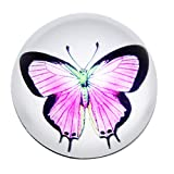 #10: Waltz&F Crystal butterfly Paperweight Galss Globe Hemisphere Home Office Table Decoration 2.36