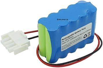 Gopacks - Batería de Repuesto para Record ATRE021 (Control automático de Puerta, Puertas giratorias, Puertas correderas, batería, batería): Amazon.es: Electrónica