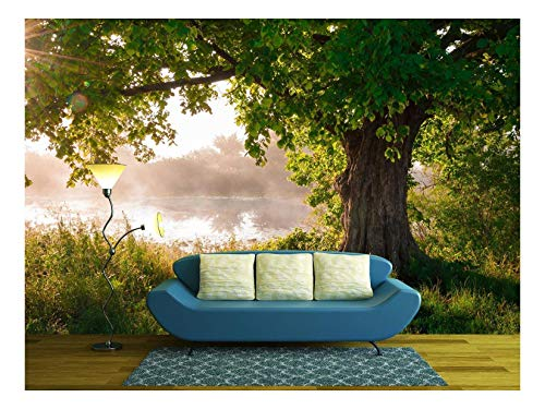 wall26 - Oak Tree in Full Leaf in Summer Standing Alone - Removable Wall Mural | Self-Adhesive Large Wallpaper - 100x144 inches ()