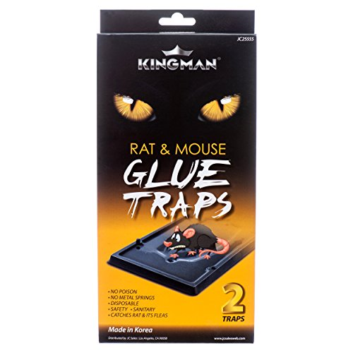 Kingman Mouse Trap Rat Trap Glue Trap/Board (Large Size) (1 Pack/2 Traps) Rodent Trap Safe Easy Non-Toxic (2 Pack Trap Mouse)