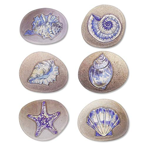 Beautiful shell refrigerator magnet set,six different kind of Marine life,pebbles fridge stickers, be used for office whiteboard family friends decor, best gift for children adult (6Pcs)
