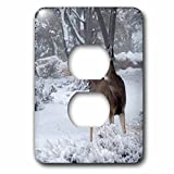 3dRose Danita Delimont - Deer - USA, Arizona, Grand Canyon National Park. Doe in winter scenic. - Light Switch Covers - 2 plug outlet cover (lsp_278442_6)