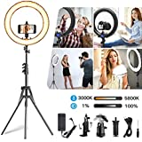 IVISII Ring Light,Upgraded Version 18.5 inch Circle Light with LCD Display Adjustable Color Temperature 3000K-5800K, YouTube Makeup, for Video Shooting, Portrait, Vlog, Selfie (No Carrying Bag)