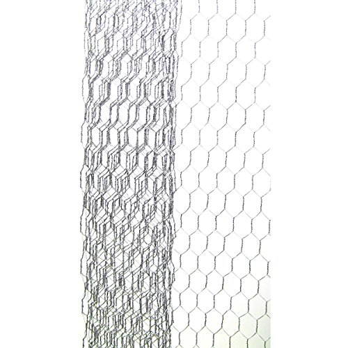 Galvanized Chicken Wire Net for Craftwork