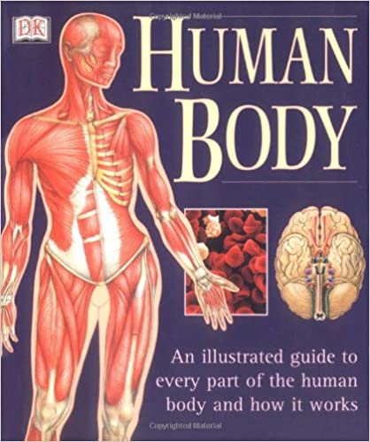 Human Body An Illustrated Guide To Every Part Of The Human Body And