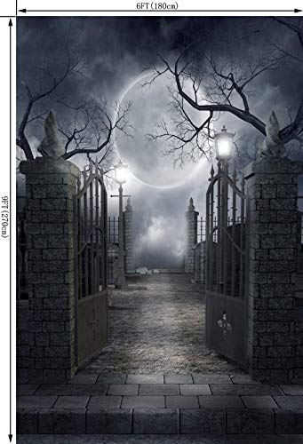 Ouyida Halloween Horror Night 6X9FT CP Pictorial cloth Photography Background Computer-Printed Vinyl Backdrop TP17 by OUYIDA (Image #2)