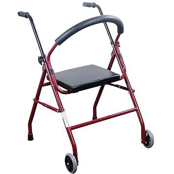 Amazon.com: HSRG - Silla de baño, dos ruedas, plegable ...