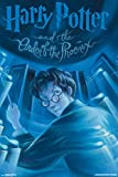 Trends International Harry Potter and the Order of the Phoenix Collector's Edition Wall Poster 24' x 36'