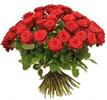 Rosenstrauss Blumenstrauss Mit Roten Rosen Xxl Rosenrot 1a