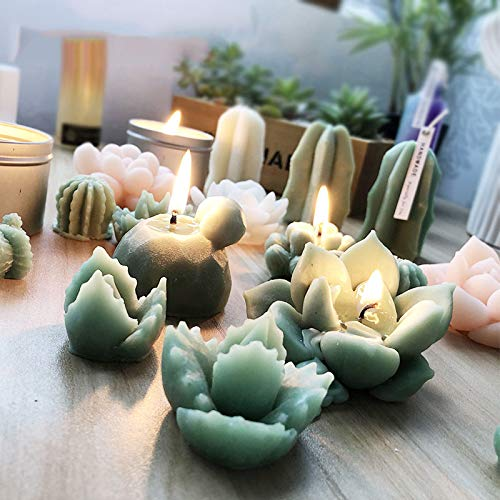 Big Size Succulent Plants Fondant Cake Silicone Mold Cactus DIY Aroma Gypsum Plaster Silicon Mould Candle Molds