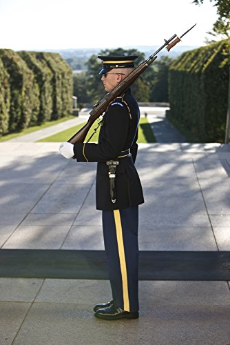 Posterazzi PSTTMO100602MLARGE Honor Guard at The Tomb of The Unknown Soldier National Cemetery Arlington Virginia USA Poster Print, 22 x 34