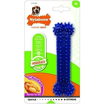 Pet Supplies Nylabone Nyb832157 Essentials Daily Dental