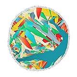 KESS InHouse Danny Ivan Soccer Slide Crazy Rainbow Round Beach Towel Blanket