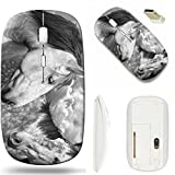 MSD Wireless Mouse White Base Travel 2.4G Wireless Mice with USB Receiver, Noiseless and Silent Click with 1000 DPI for Notebook, pc, Laptop, Computer, mac Book Design: 8878786 Best Friends