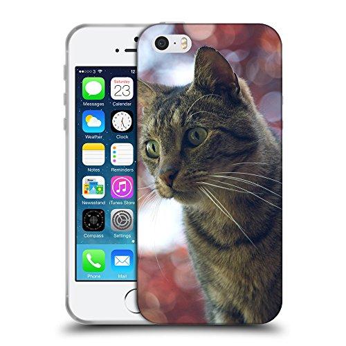 Just Phone Cases Coque de Protection TPU Silicone Case pour // V00004228 Surpris chat domestique // Apple iPhone 5 5S 5G SE