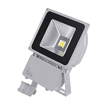 PrimLight 100W Impermeabiliza Reflector Blanco Frío del LED ...