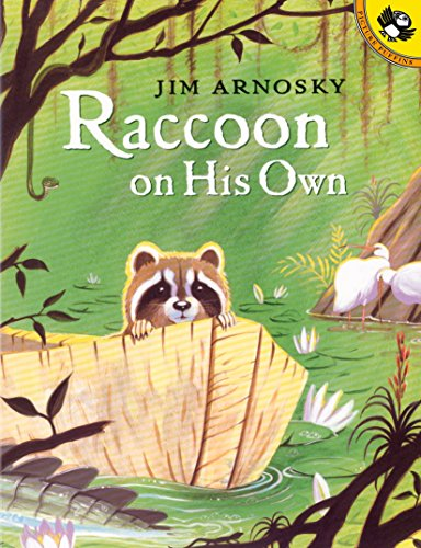 Raccoon On His Own (Picture Puffin Books)