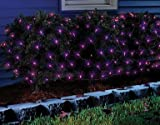 Sylvania Halloween Series Net-style Lights, Purple Bubls 100 Lights