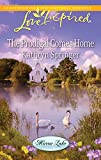 img - for The Prodigal Comes Home (Mirror Lake) book / textbook / text book
